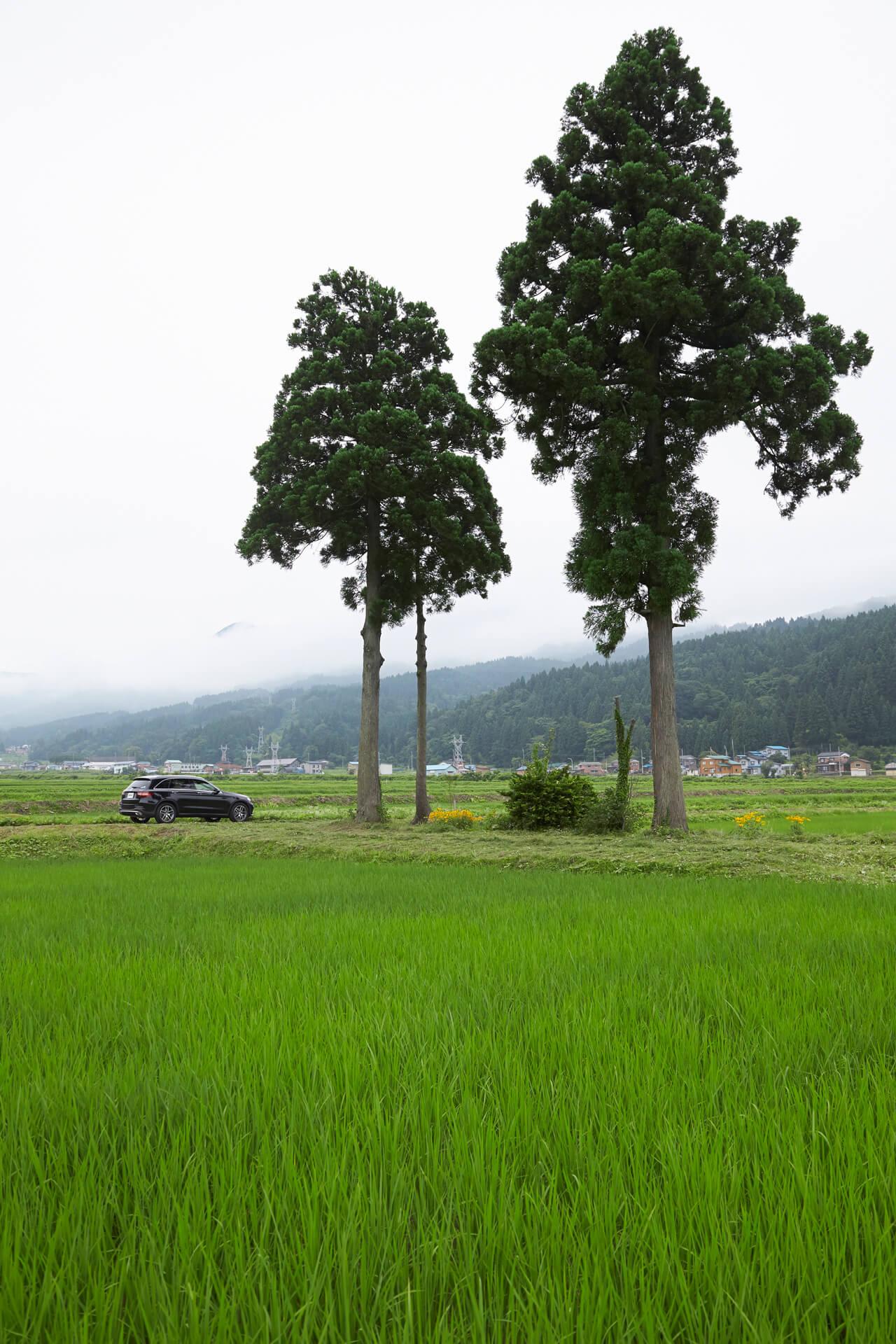 【YANASE presents 】「この道、この旅。」~長野県・塩の道(千国街道) 編 - NAGANO DRIVE SHIONOMICHI (17)